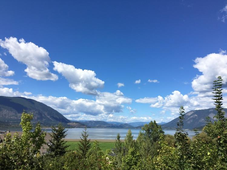 salmon arm shuswap